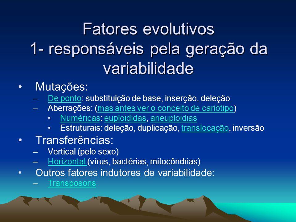 Fatores evolutivos 1- responsáveis pela geração da variabilidade Mutações: –De ponto: substituição de base, inserção, deleçãoDe ponto –Aberrações: (ma