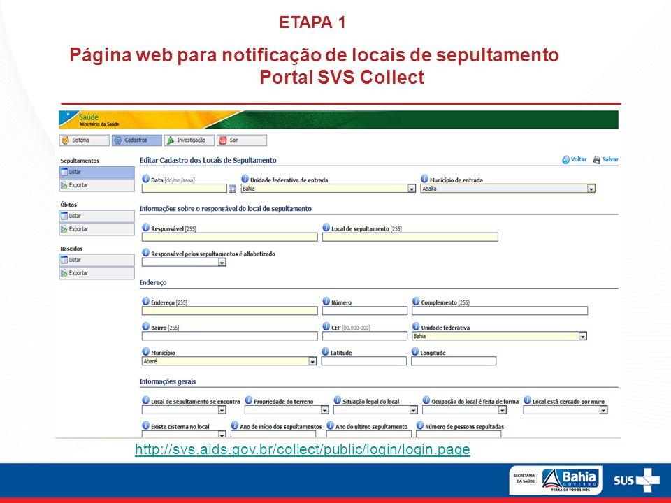Fonte de dados: Portal SVS Collect Data de atualização: 19/09/2013
