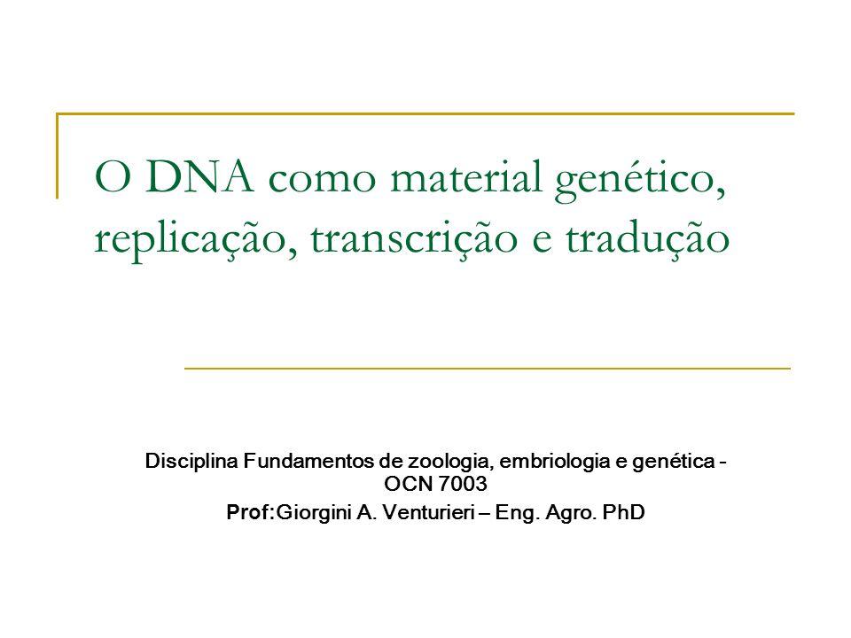 O DNA como material genético, replicação, transcrição e tradução Disciplina Fundamentos de zoologia, embriologia e genética - OCN 7003 Prof: Giorgini