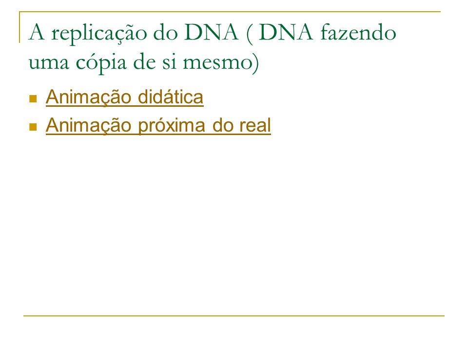 A replicação do DNA ( DNA fazendo uma cópia de si mesmo) Animação didática Animação próxima do real