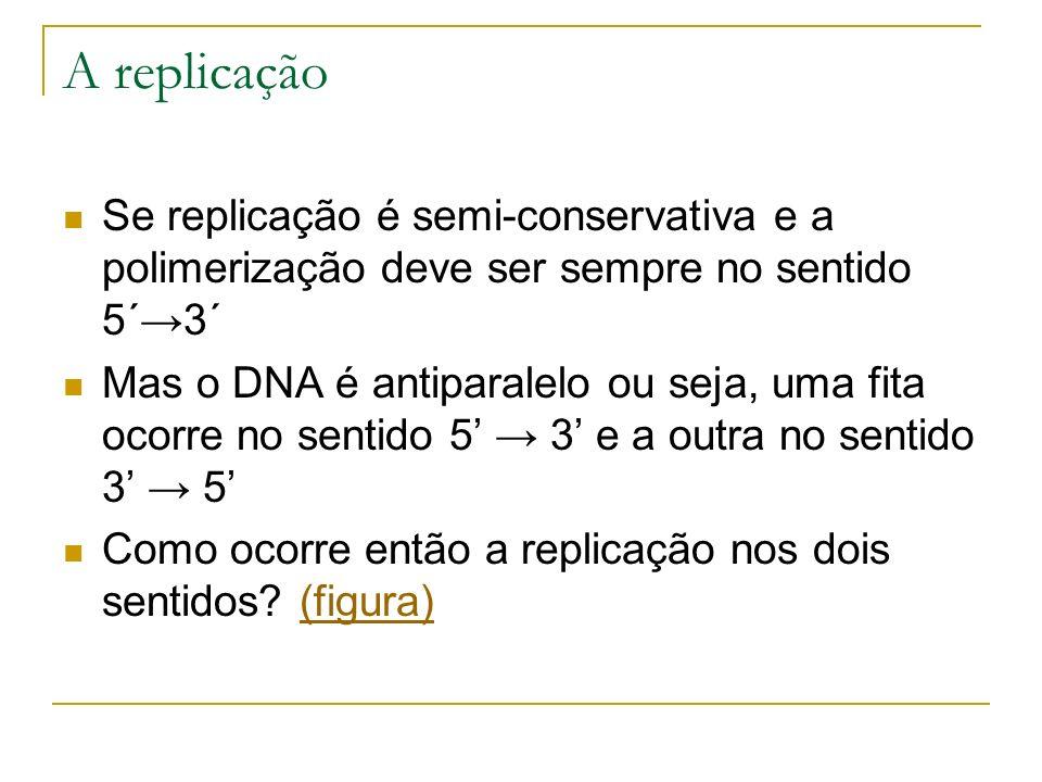 A replicação Se replicação é semi-conservativa e a polimerização deve ser sempre no sentido 5´3´ Mas o DNA é antiparalelo ou seja, uma fita ocorre no