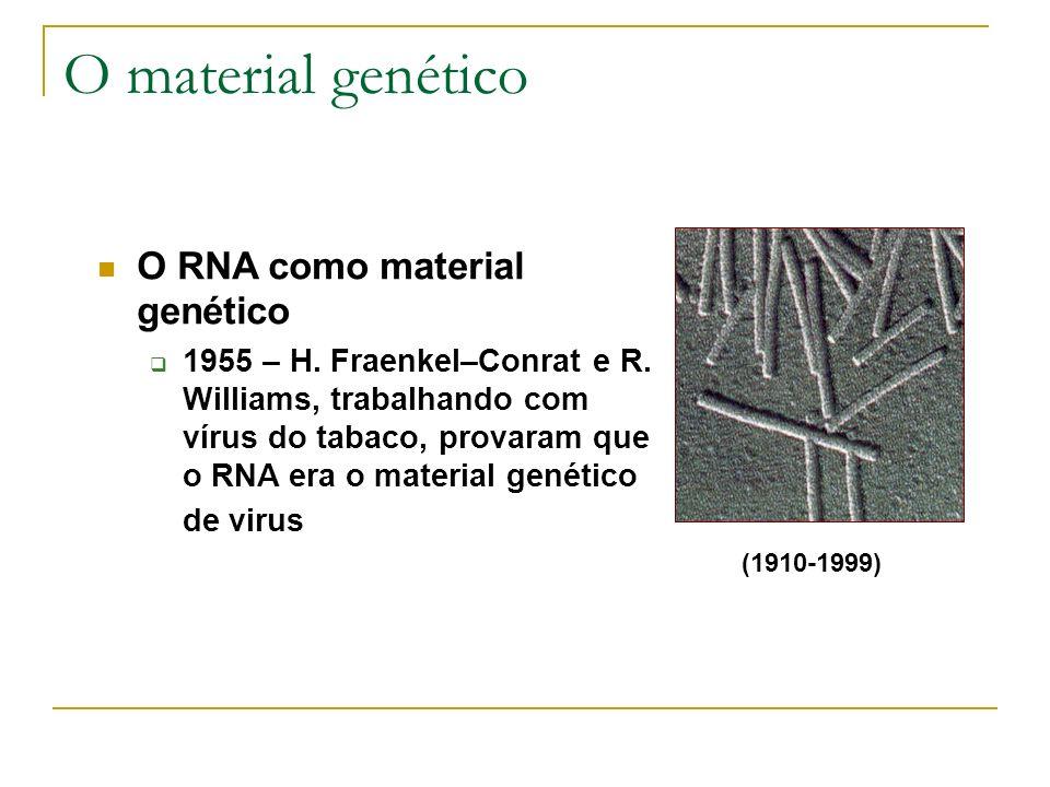 O material genético (1910-1999) O RNA como material genético 1955 – H. Fraenkel–Conrat e R. Williams, trabalhando com vírus do tabaco, provaram que o