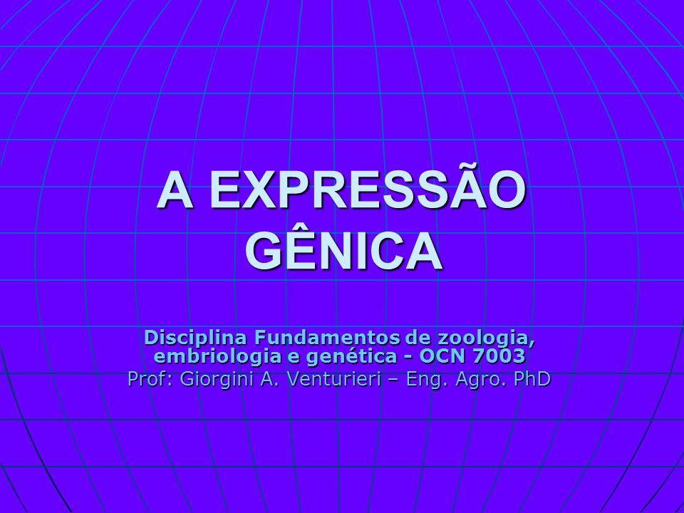 A EXPRESSÃO GÊNICA Disciplina Fundamentos de zoologia, embriologia e genética - OCN 7003 Prof: Giorgini A. Venturieri – Eng. Agro. PhD
