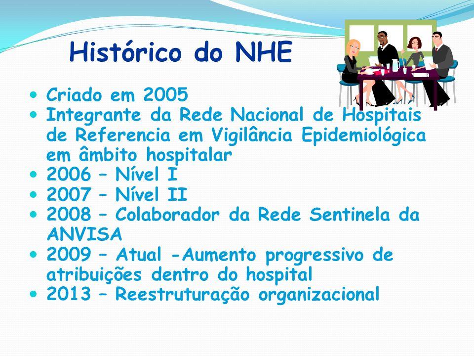 Histórico do NHE Criado em 2005 Integrante da Rede Nacional de Hospitais de Referencia em Vigilância Epidemiológica em âmbito hospitalar 2006 – Nível