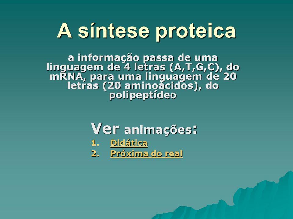A síntese proteica a informação passa de uma linguagem de 4 letras (A,T,G,C), do mRNA, para uma linguagem de 20 letras (20 aminoácidos), do polipeptíd