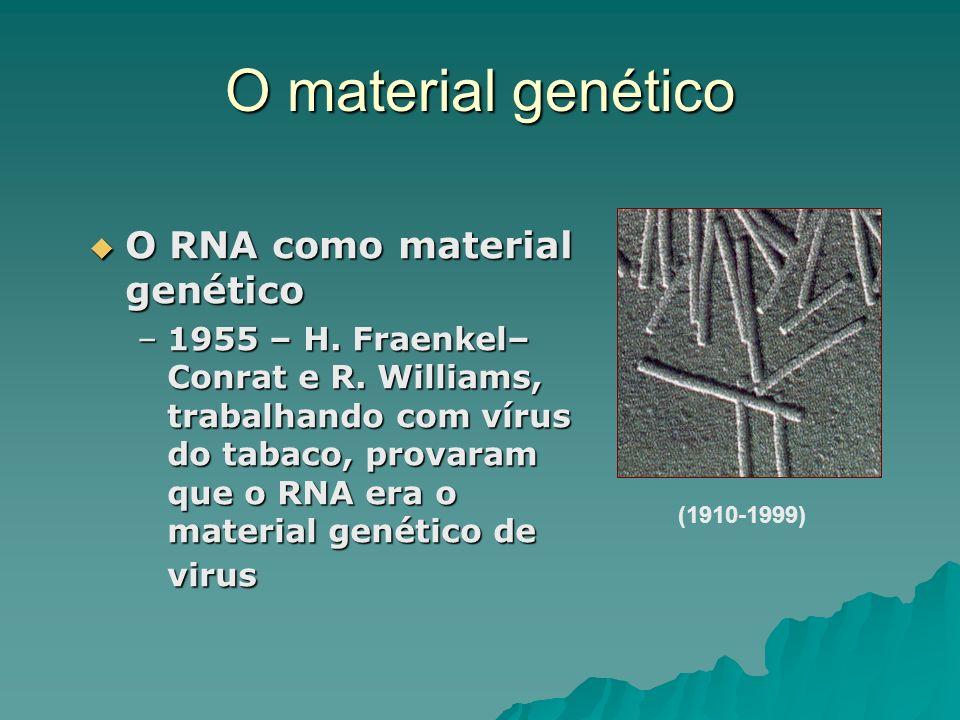 O material genético (1910-1999) O RNA como material genético O RNA como material genético –1955 – H. Fraenkel– Conrat e R. Williams, trabalhando com v