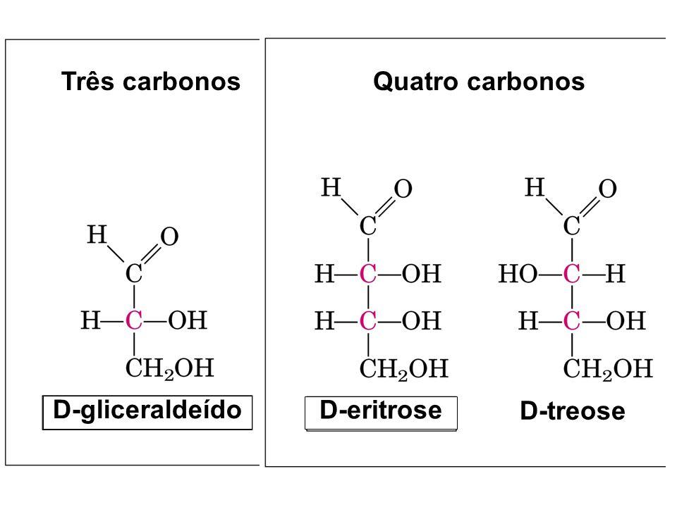 Três carbonos D-gliceraldeído D-eritrose Quatro carbonos D-treose