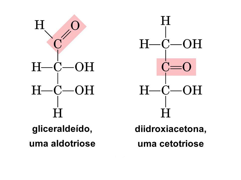 gliceraldeído, uma aldotriose diidroxiacetona, uma cetotriose