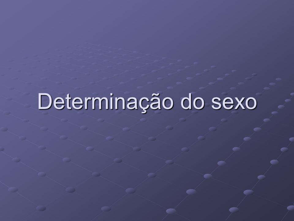 Determinação do sexo