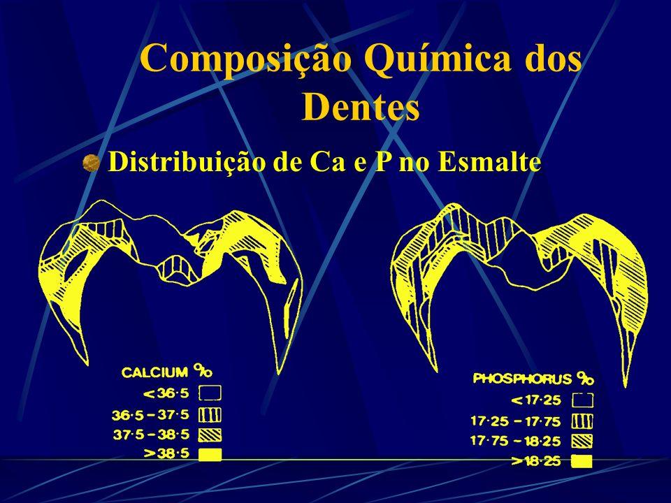 Composição Química dos Dentes Cristais de Hidroxiapatita Ca 10 (PO 4 ) 6 (OH) 2 Ca I P PP Ca II OH Substituintes F - e HCO 3 - Substituintes HCO 3 -