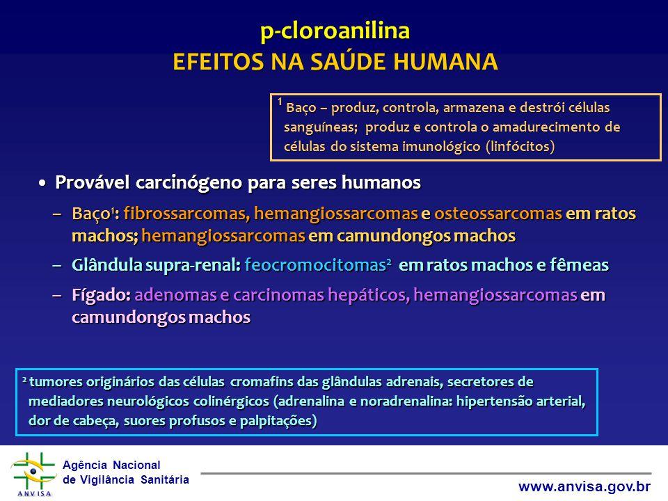 Agência Nacional de Vigilância Sanitária www.anvisa.gov.br Provável carcinógeno para seres humanosProvável carcinógeno para seres humanos –Baço 1 : fi
