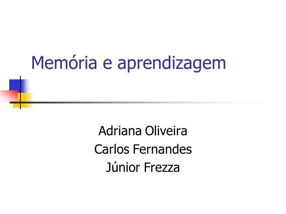 Memória e aprendizagem Adriana Oliveira Carlos Fernandes Júnior Frezza