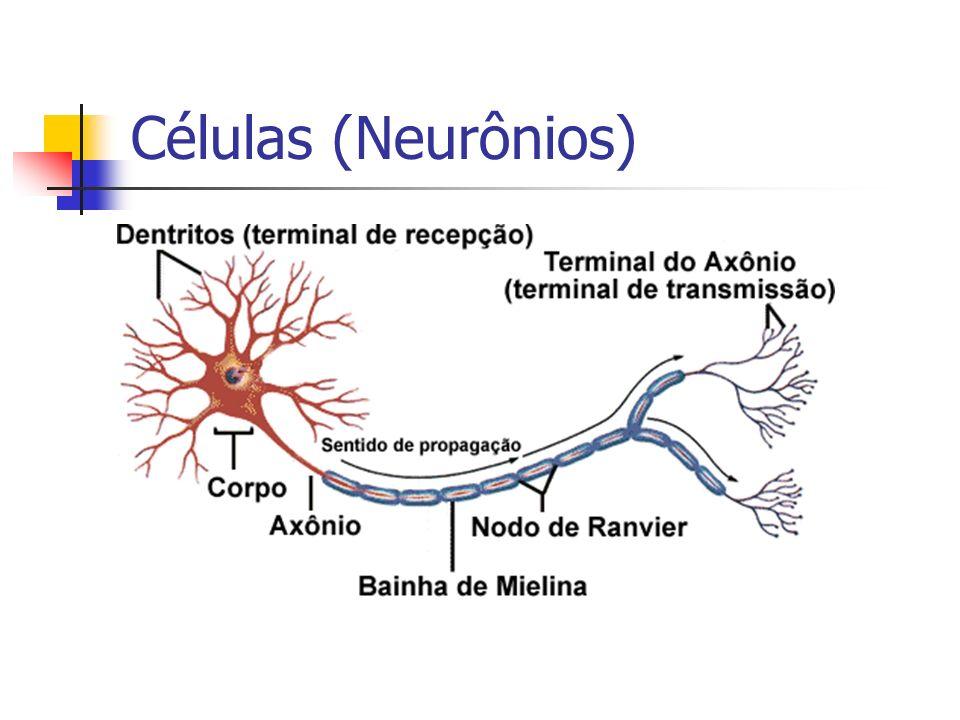Células (Neurônios)