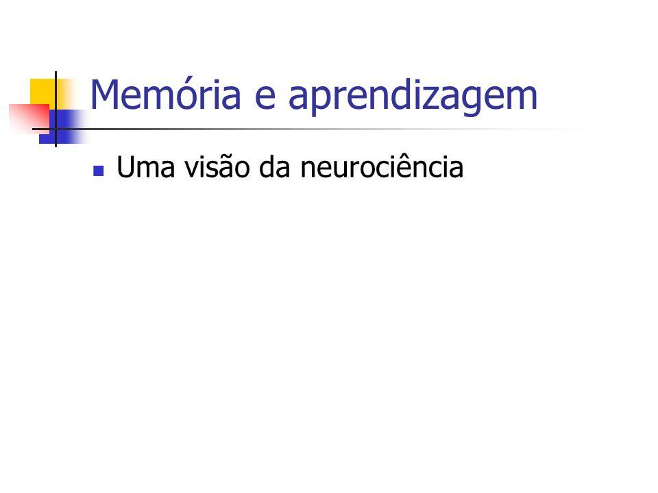 Memória e aprendizagem Uma visão da neurociência