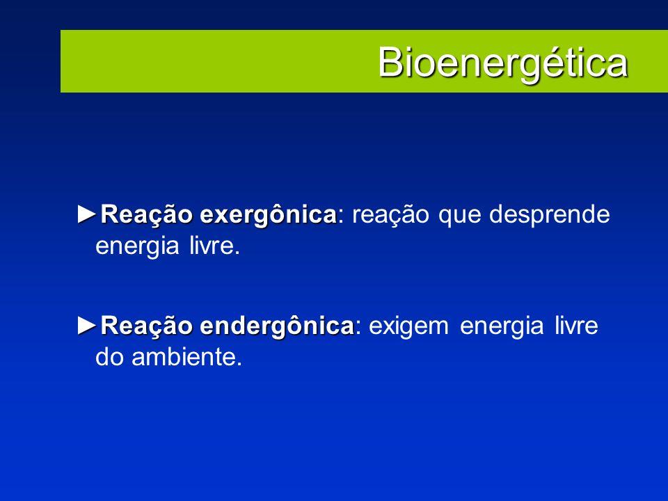 Bioenergética Reação exergônicaReação exergônica: reação que desprende energia livre. Reação endergônicaReação endergônica: exigem energia livre do am