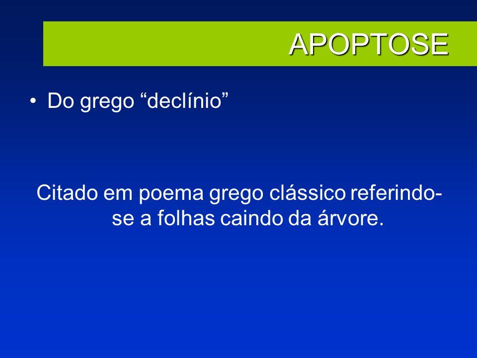 APOPTOSE Do grego declínio Citado em poema grego clássico referindo- se a folhas caindo da árvore.