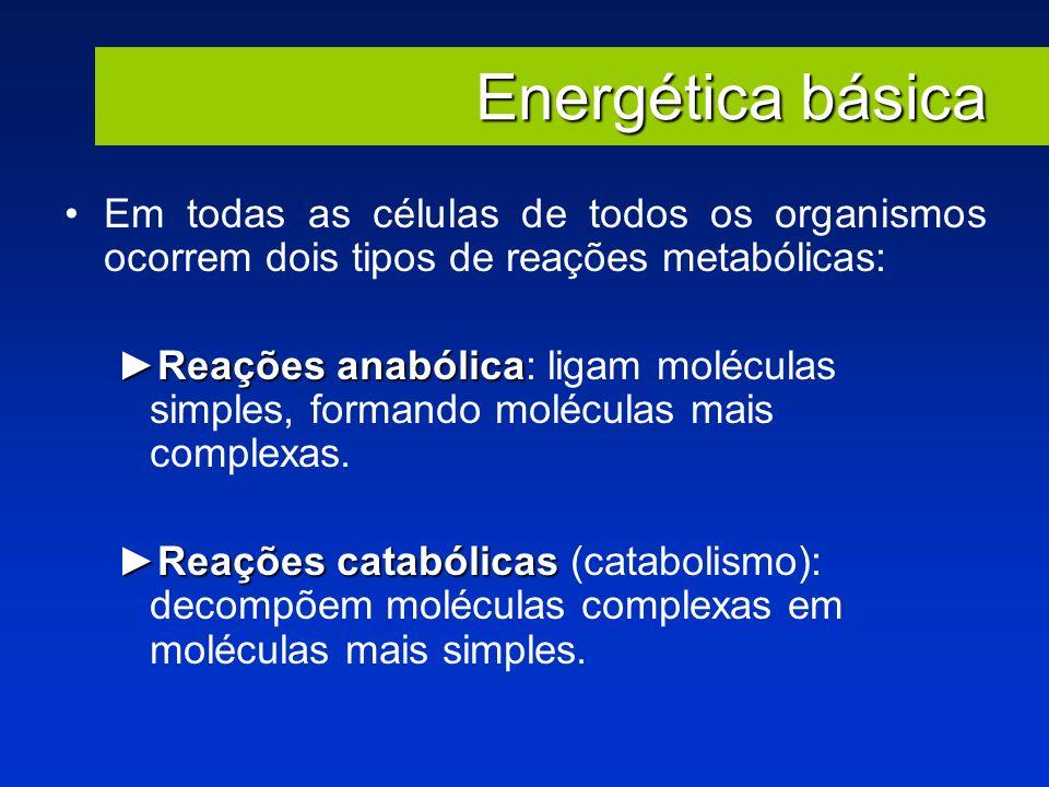 Em todas as células de todos os organismos ocorrem dois tipos de reações metabólicas: Reações anabólicaReações anabólica: ligam moléculas simples, for