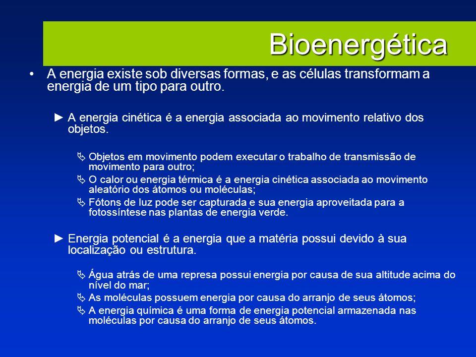 Bioenergética A energia existe sob diversas formas, e as células transformam a energia de um tipo para outro. A energia cinética é a energia associada