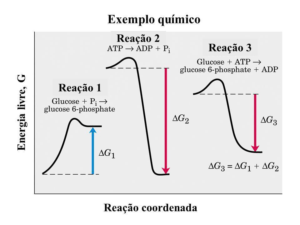 Exemplo químico Reação 1 Reação 2 Reação 3 Energia livre, G Reação coordenada