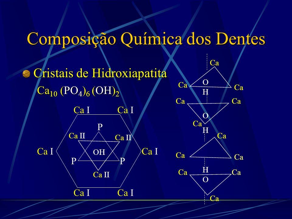 Composição Química dos Dentes Esmalte Dentina PrismasCristais Proteínas