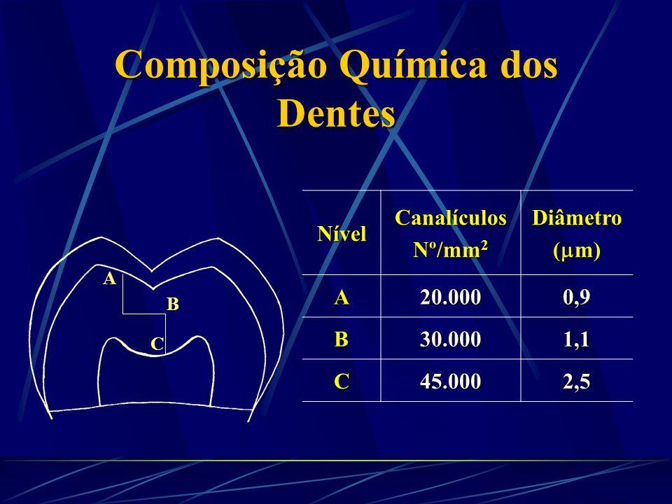 Composição Química dos Dentes Composição Inorgânica da Dentina- 75% Os cristais de hidroxiapatita da dentina, cemento e osso são muito menores. Os cri