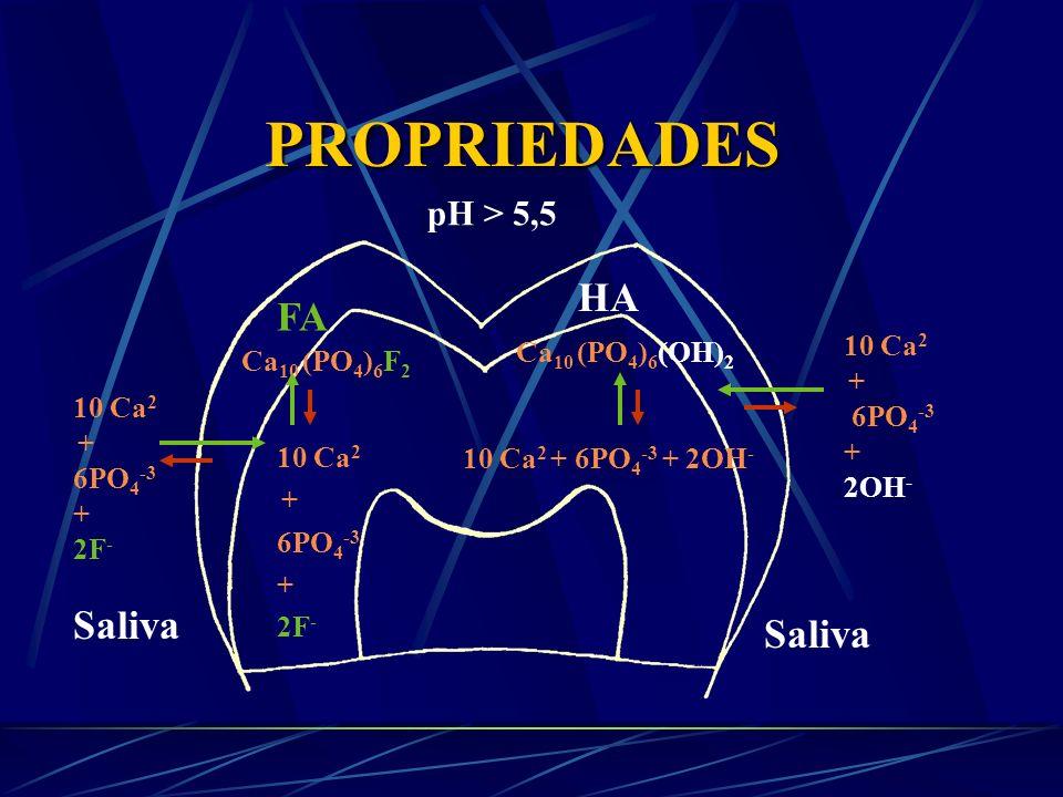 Produto de Solubilidade da HA e FA e Produto Iônico da Saliva Mineral Produto de solubilidade pH 7,0 Produto iônico na saliva C a x P x OH ( ou F) Hidroxiapatita10 -117 10 -91 Fluorapatita10 -121 10 -93