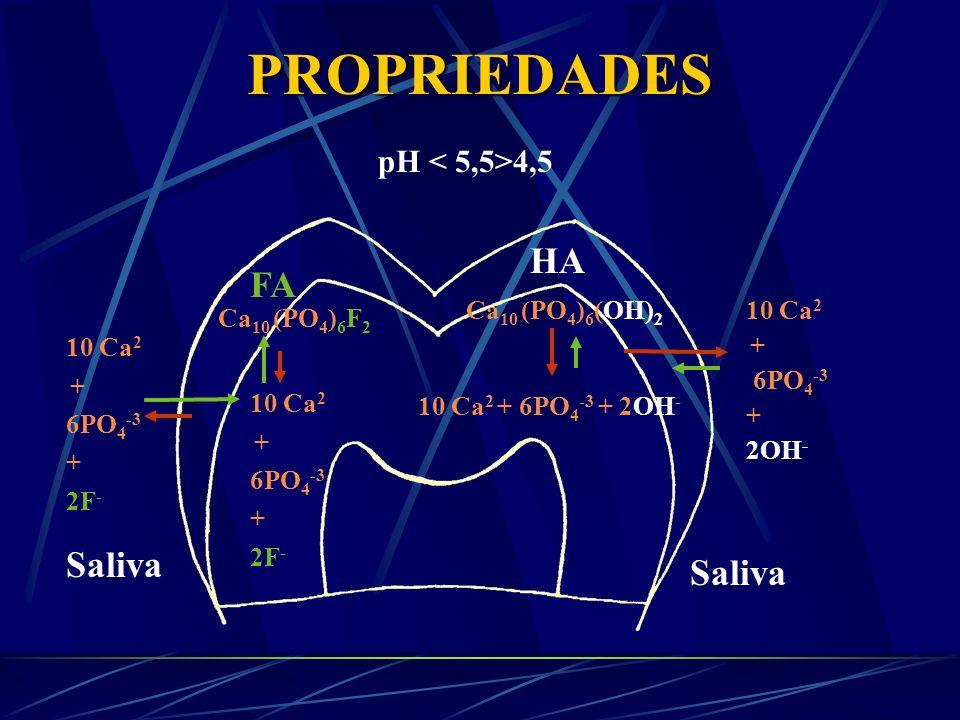 PROPRIEDADES pH > 5,5 Ca 10 (PO 4 ) 6 (OH) 2 10 Ca 2 + 6PO 4 -3 + 2OH - 10 Ca 2 + 6PO 4 -3 + 2OH - Ca 10 (PO 4 ) 6 F 2 10 Ca 2 + 6PO 4 -3 + 2F - 10 Ca