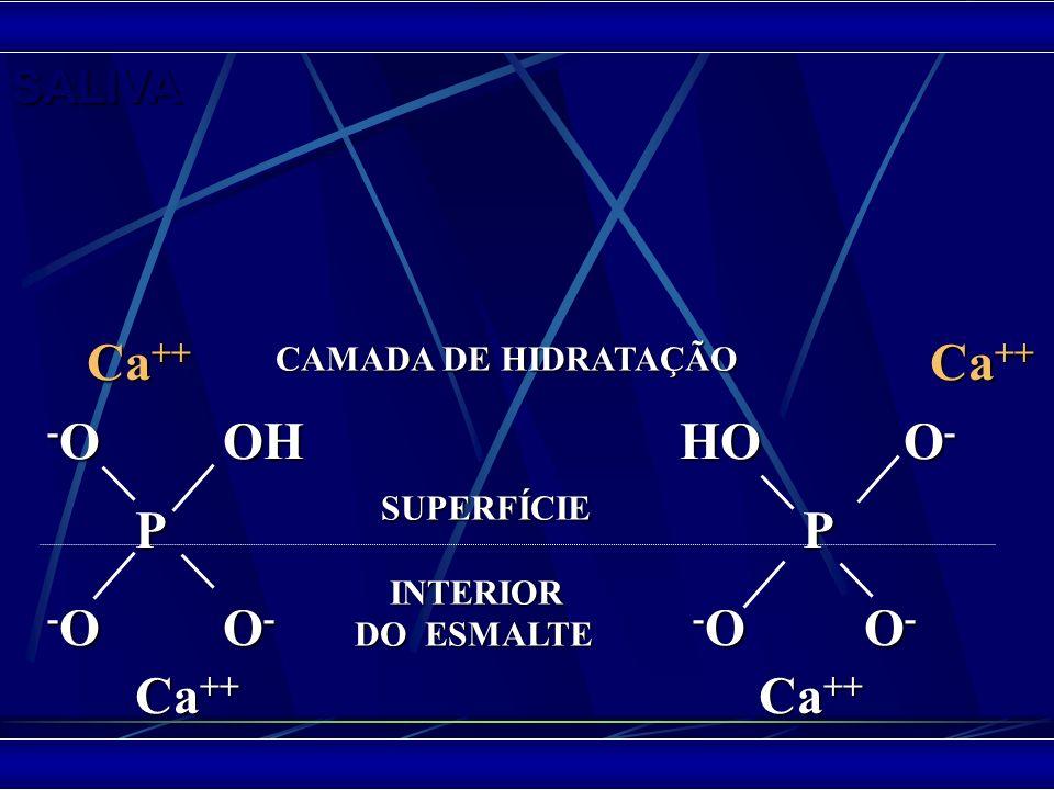 - OOH HO O - P P - OO - - O O - Ca ++ Ca ++ Ca ++ Ca ++ SUPERFÍCIE SUPERFÍCIE INTERIOR INTERIOR DO ESMALTE