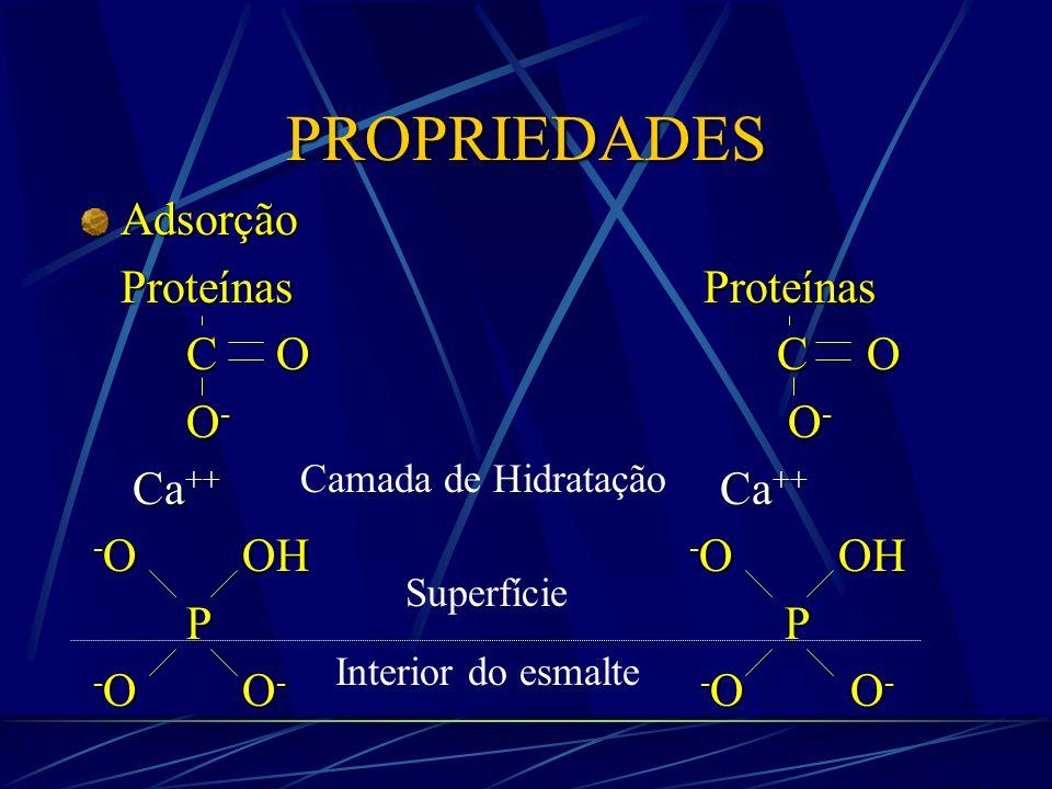 Ca ++ Ca ++ Ca ++ Ca ++ - OOH HO O - P P - OO - - O O - Ca ++ Ca ++ Ca ++ Ca ++ CAMADA DE HIDRATAÇÃO SUPERFÍCIE SUPERFÍCIE INTERIOR INTERIOR DO ESMALTE SALIVA