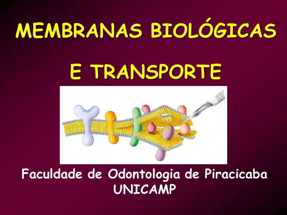 MEMBRANAS BIOLÓGICAS E TRANSPORTE Faculdade de Odontologia de Piracicaba UNICAMP