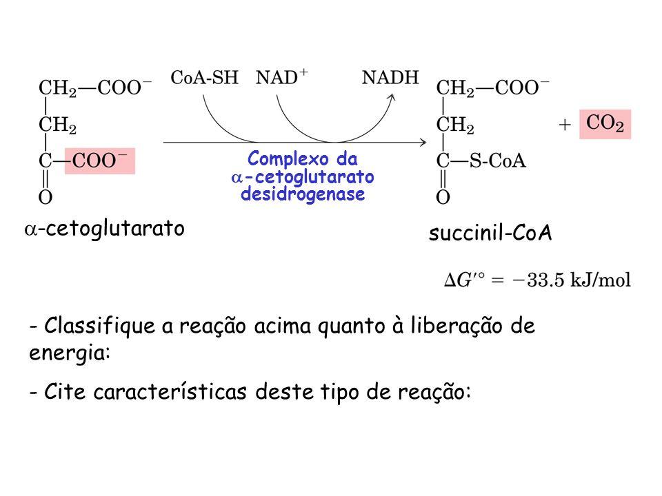 succinil-CoA -cetoglutarato Complexo da -cetoglutarato desidrogenase - Classifique a reação acima quanto à liberação de energia: - Cite característica