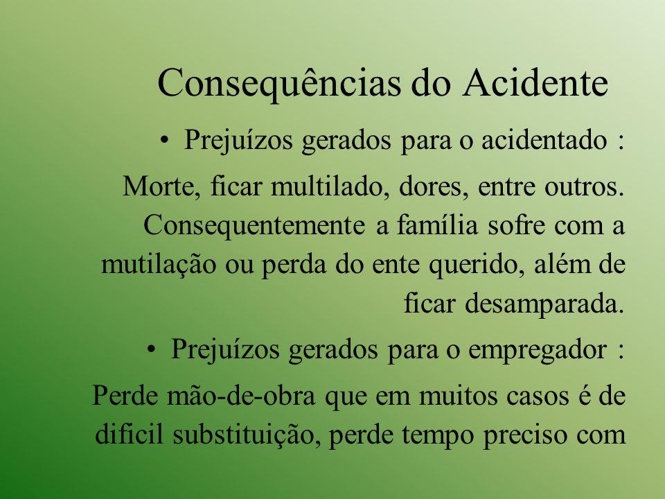 Consequências do Acidente Prejuízos gerados para o acidentado : Morte, ficar multilado, dores, entre outros. Consequentemente a família sofre com a mu