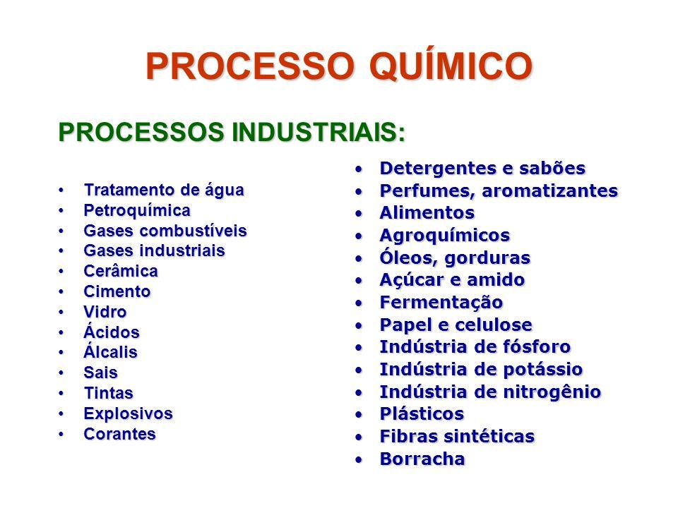 PROCESSO QUÍMICO PROCESSOS INDUSTRIAIS: Tratamento de águaTratamento de água PetroquímicaPetroquímica Gases combustíveisGases combustíveis Gases indus