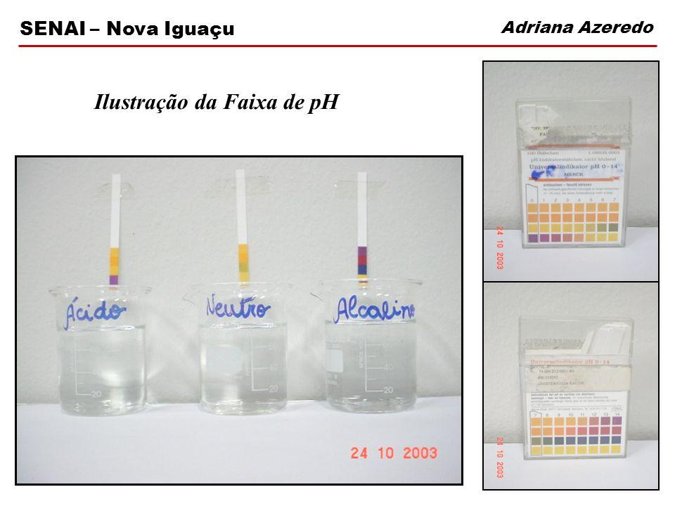 Adriana Azeredo SENAI – Nova Iguaçu Ilustração da Faixa de pH