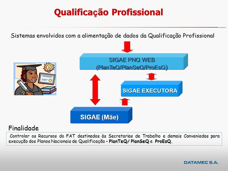 SIGAE200620072006200720062007Conveniadas414261161 Executoras Contratadas 3892123170 Educandos (cursos) e Participantes (oficinas/seminários,...) 119.0