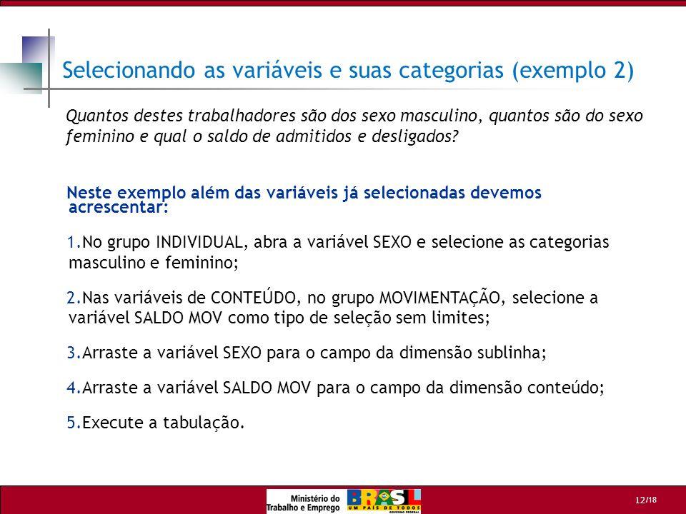 /18 12 Selecionando as variáveis e suas categorias (exemplo 2) Neste exemplo além das variáveis já selecionadas devemos acrescentar: 1.No grupo INDIVI