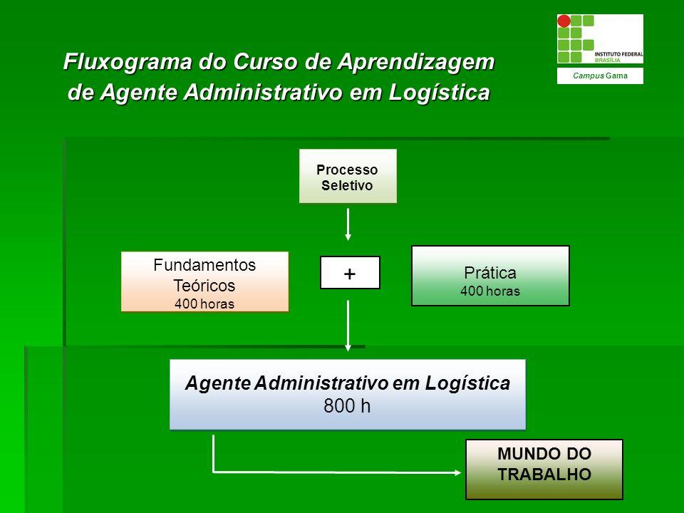 Fluxograma do Curso de Aprendizagem de Agente Administrativo em Logística Campus Gama Fundamentos Teóricos 400 horas Fundamentos Teóricos 400 horas Pr
