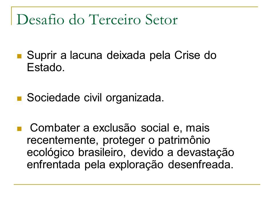 Desafio do Terceiro Setor Suprir a lacuna deixada pela Crise do Estado. Sociedade civil organizada. Combater a exclusão social e, mais recentemente, p