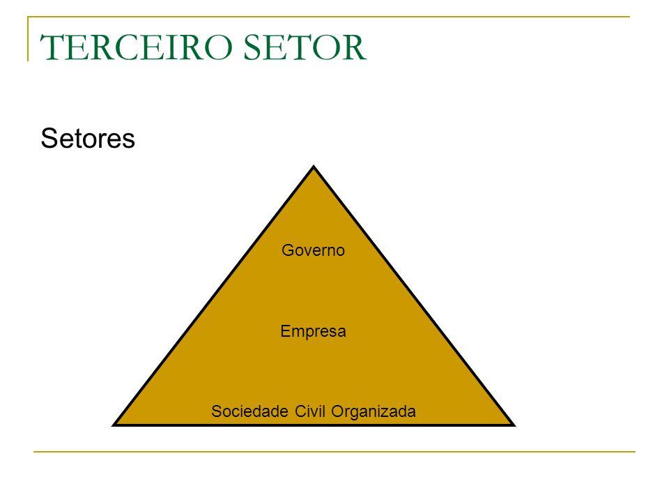 TERCEIRO SETOR Setores Governo Empresa Sociedade Civil Organizada