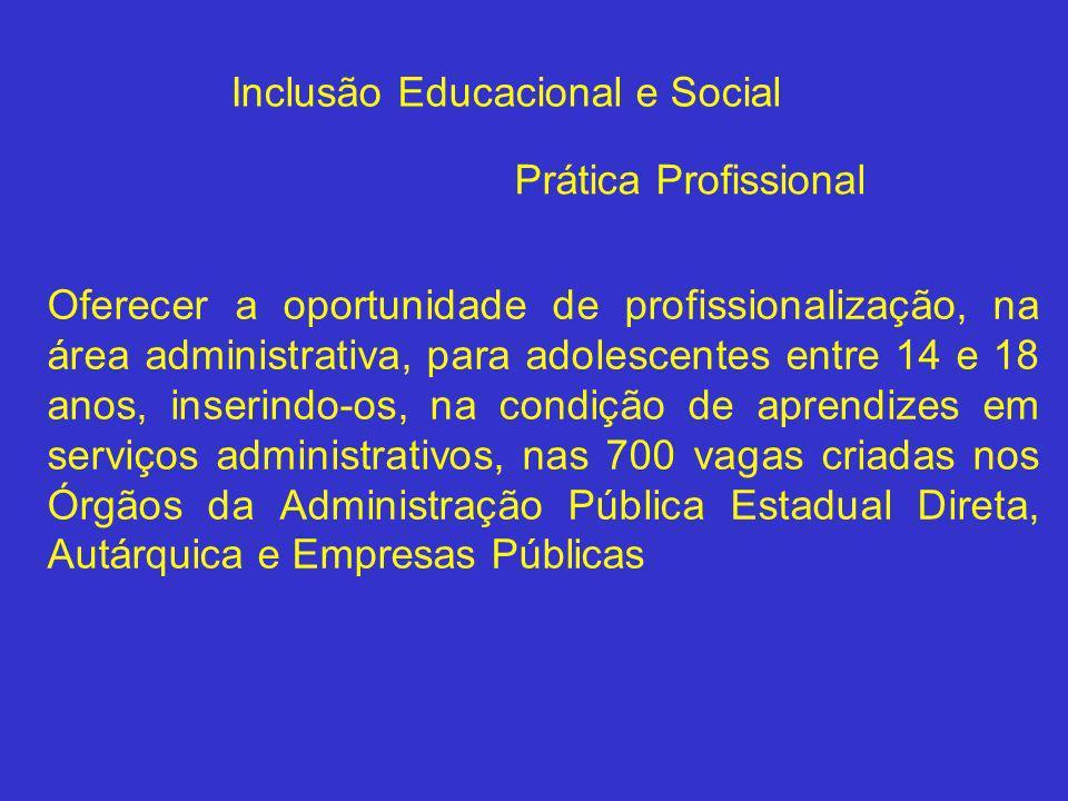 Oferecer a oportunidade de profissionalização, na área administrativa, para adolescentes entre 14 e 18 anos, inserindo-os, na condição de aprendizes e