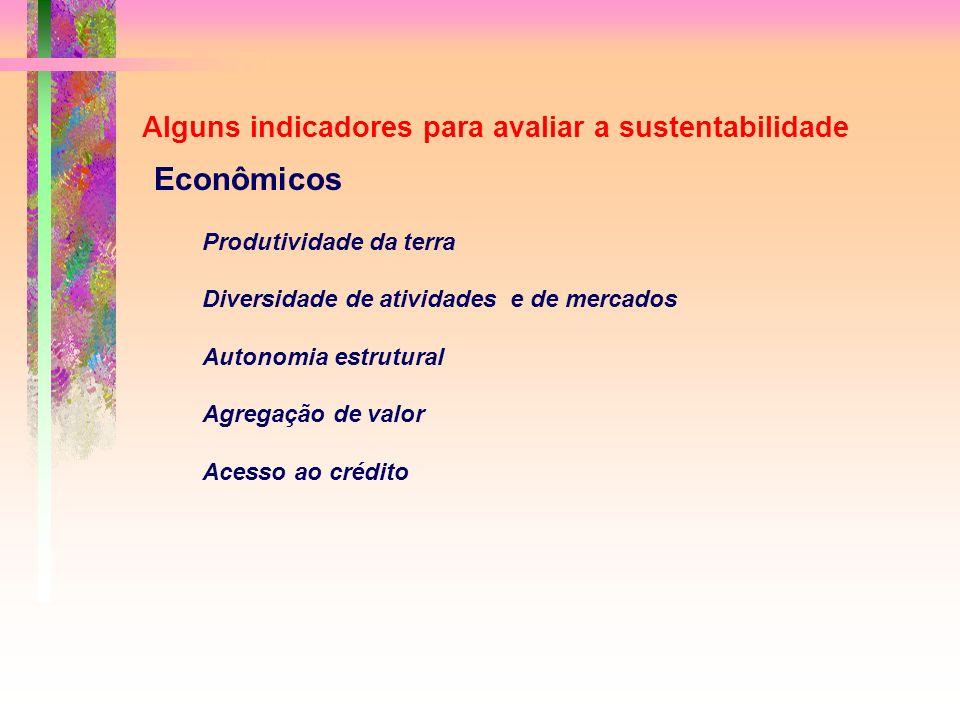Alguns indicadores para avaliar a sustentabilidade Econômicos Produtividade da terra Diversidade de atividades e de mercados Autonomia estrutural Agregação de valor Acesso ao crédito