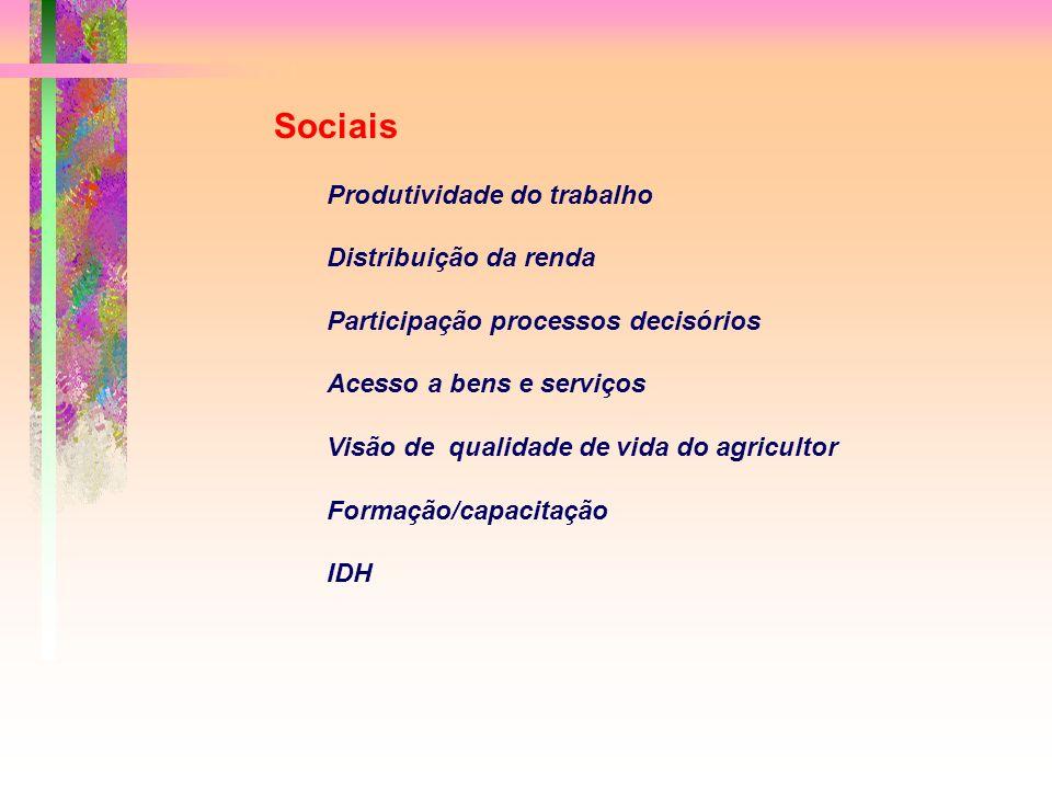 Sociais Produtividade do trabalho Distribuição da renda Participação processos decisórios Acesso a bens e serviços Visão de qualidade de vida do agricultor Formação/capacitação IDH