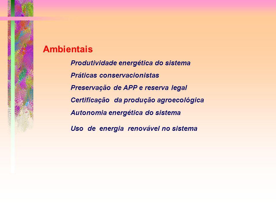Ambientais Produtividade energética do sistema Práticas conservacionistas Preservação de APP e reserva legal Certificação da produção agroecológica Autonomia energética do sistema Uso de energia renovável no sistema