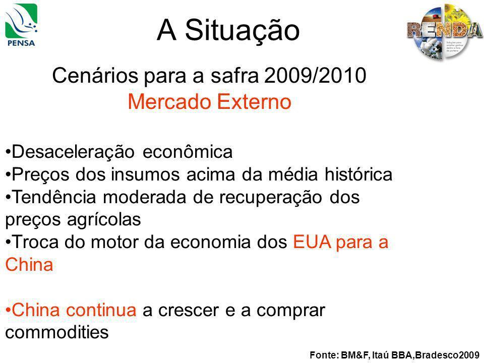 A Situação Fonte: BM&F, Itaú BBA,Bradesco2009 Cenários para a safra 2009/2010 Mercado Externo Desaceleração econômica Preços dos insumos acima da médi