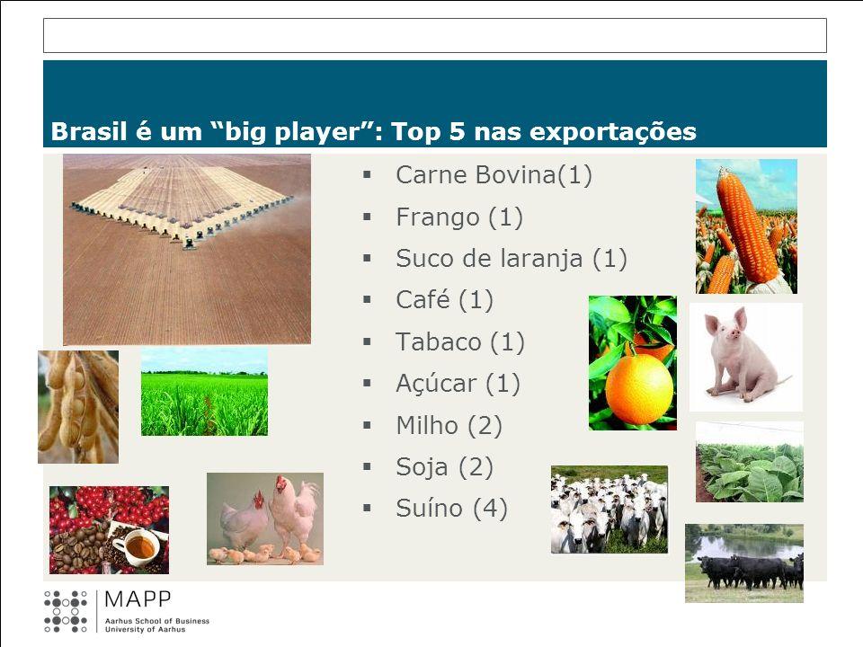 Brasil é um big player: Top 5 nas exportações Carne Bovina(1) Frango (1) Suco de laranja (1) Café (1) Tabaco (1) Açúcar (1) Milho (2) Soja (2) Suíno (