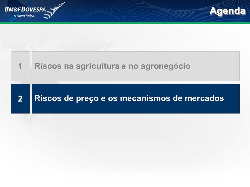 Riscos na agricultura e no agronegócio 1 Riscos de preço e os mecanismos de mercados 2 AgendaAgenda