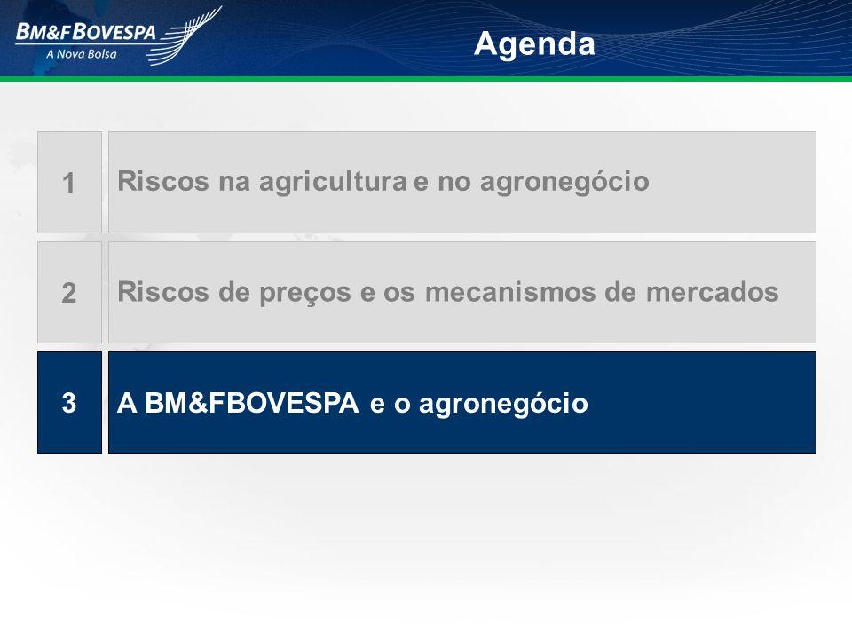 Riscos na agricultura e no agronegócio 1 Riscos de preços e os mecanismos de mercados 2 A BM&FBOVESPA e o agronegócio3 Agenda