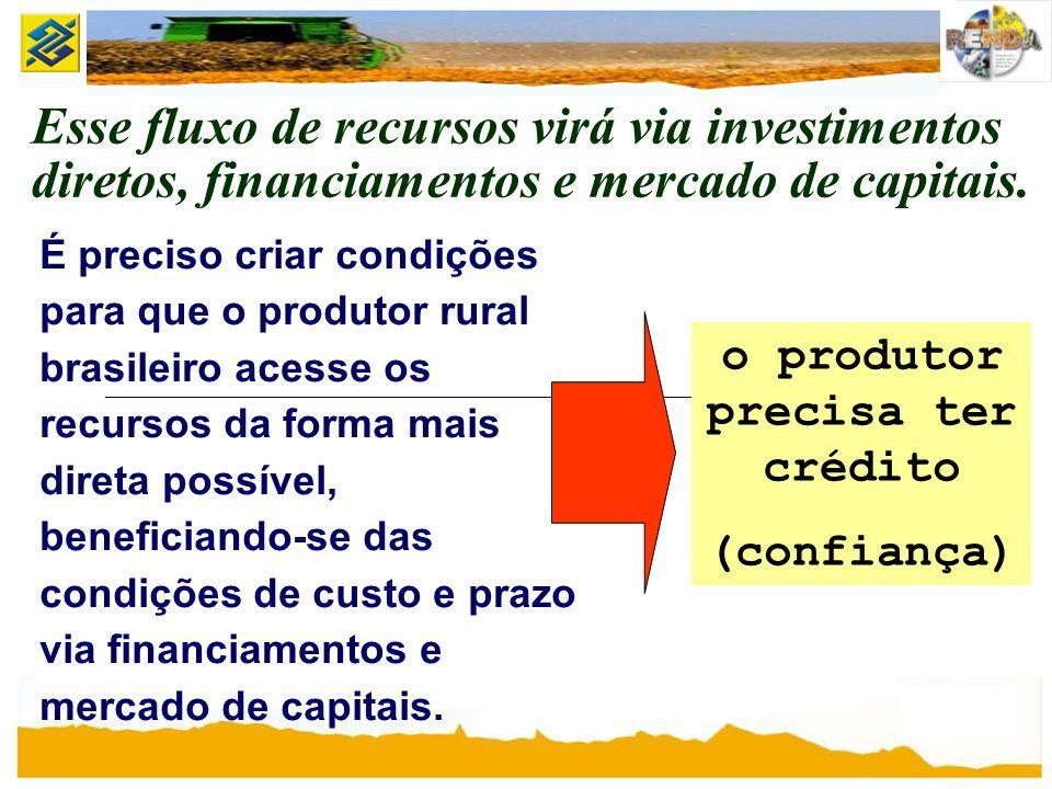 Esse fluxo de recursos virá via investimentos diretos, financiamentos e mercado de capitais. É preciso criar condições para que o produtor rural brasi