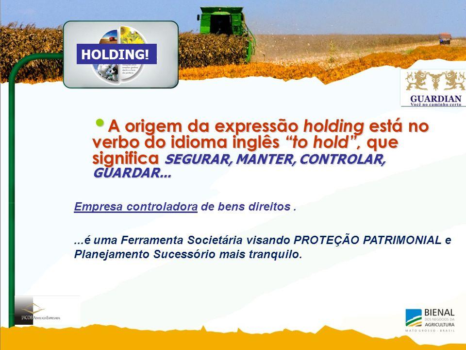 A origem da expressão holding está no verbo do idioma inglês to hold, que significa SEGURAR, MANTER, CONTROLAR, GUARDAR...