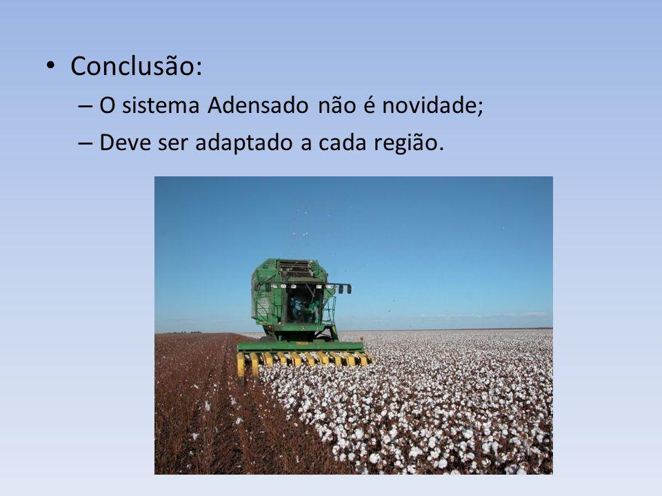 Conclusão: – O sistema Adensado não é novidade; – Deve ser adaptado a cada região.